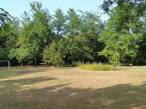 Parco delle Saline